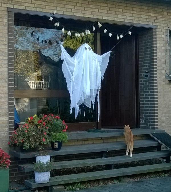 last minute Halloween versiering